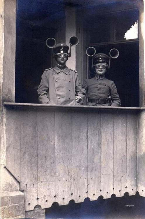 военные ухи.jpg