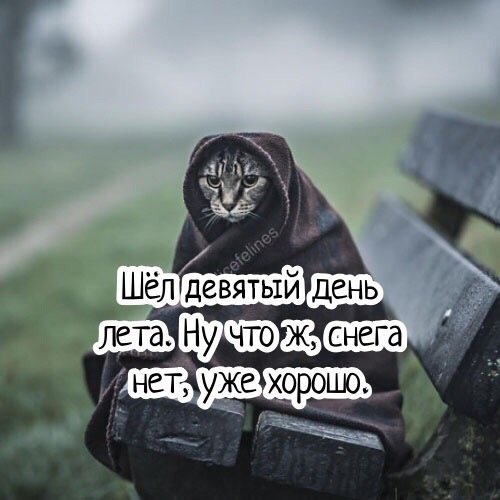 http://soundex.ru/forum/uploads/monthly_2018_06/w3OeskkD3Qg.jpg.412d9c414609b4f3cfbb842eedfc4c85.jpg