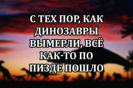 27459093_381865295558788_4143767060364631797_n.jpg