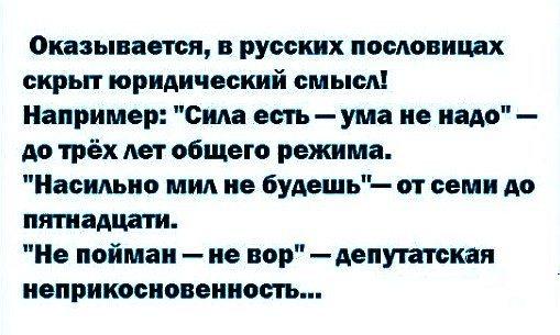 Русские пословицы.jpg