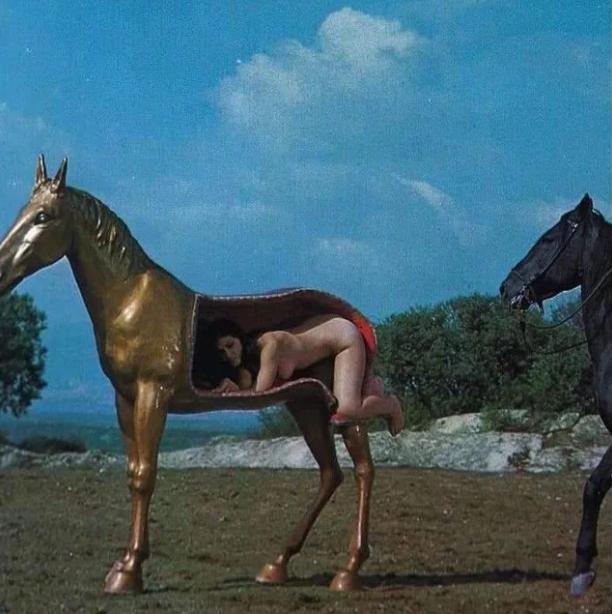 Horse lives matter.png