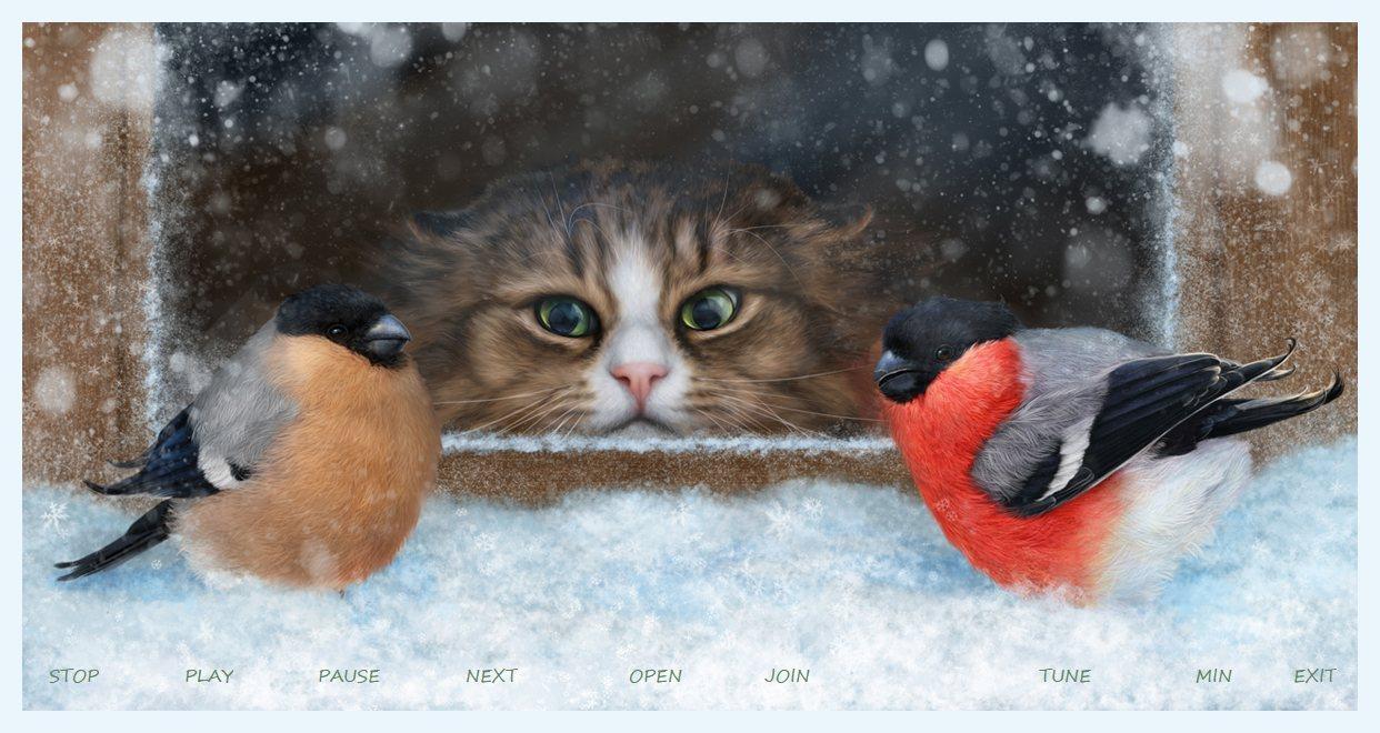 Cat & Birds play.jpg