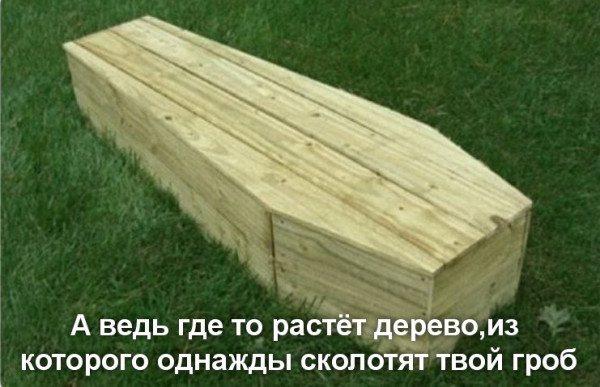 гроб.jpg